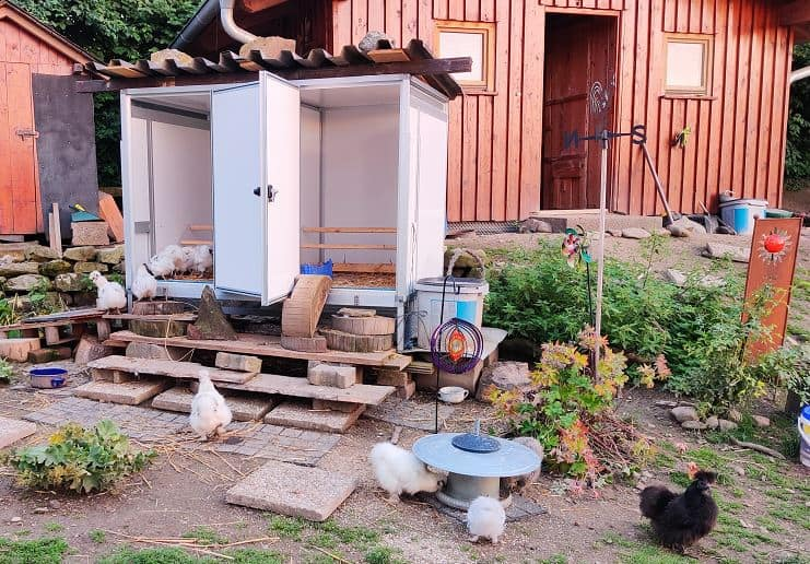 Hühnerstall Zwerghühner